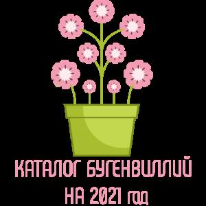 Каталог бугенвиллий на 2021 год
