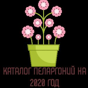 Каталог пеларгоний на 2020 год